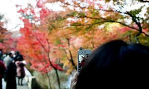 Kyoto film photography workshop – Postscript