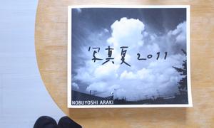 Jesse's Book Review – Shamanatsu 2011 by Araki