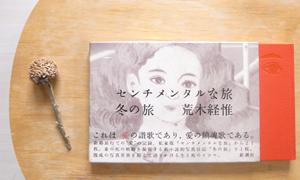 Jesse's book review – A sentimental Journey by Araki
