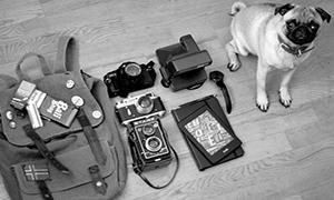 In your bag No: 674 – Jakub