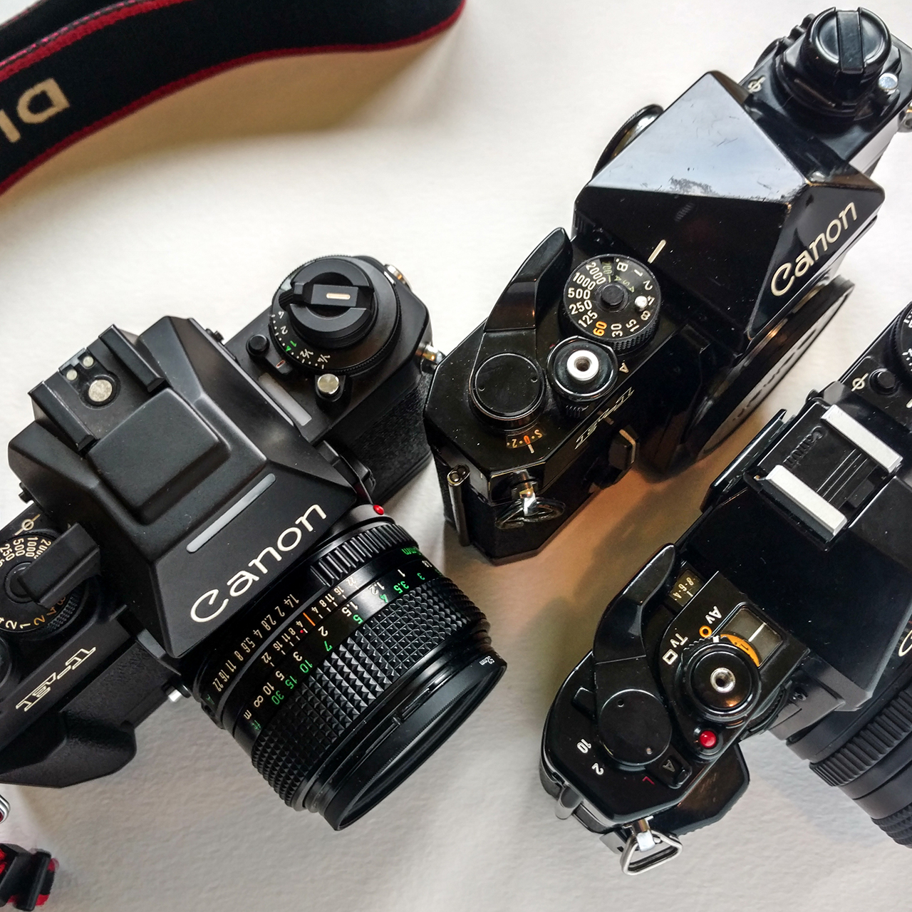 Camera Geekery: Canon 35mm film SLRs compared